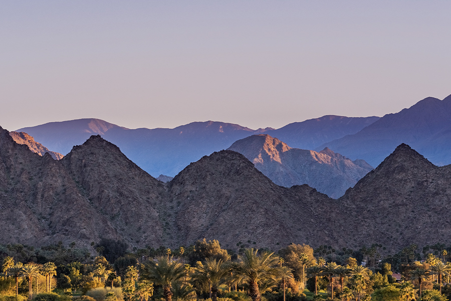 Palm Desert, CA - A Beautiful Landscape View of Palm Trees and Purple Mountains in the Background at Dusk