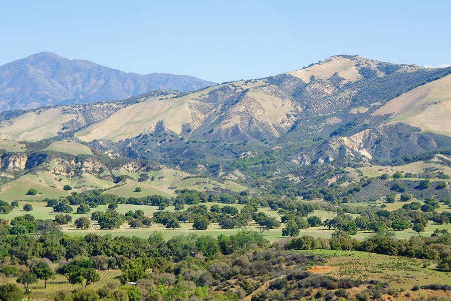 Upland, CA - View of a Landscape with Trees and Mountains in the Background in California on a Sunny Day